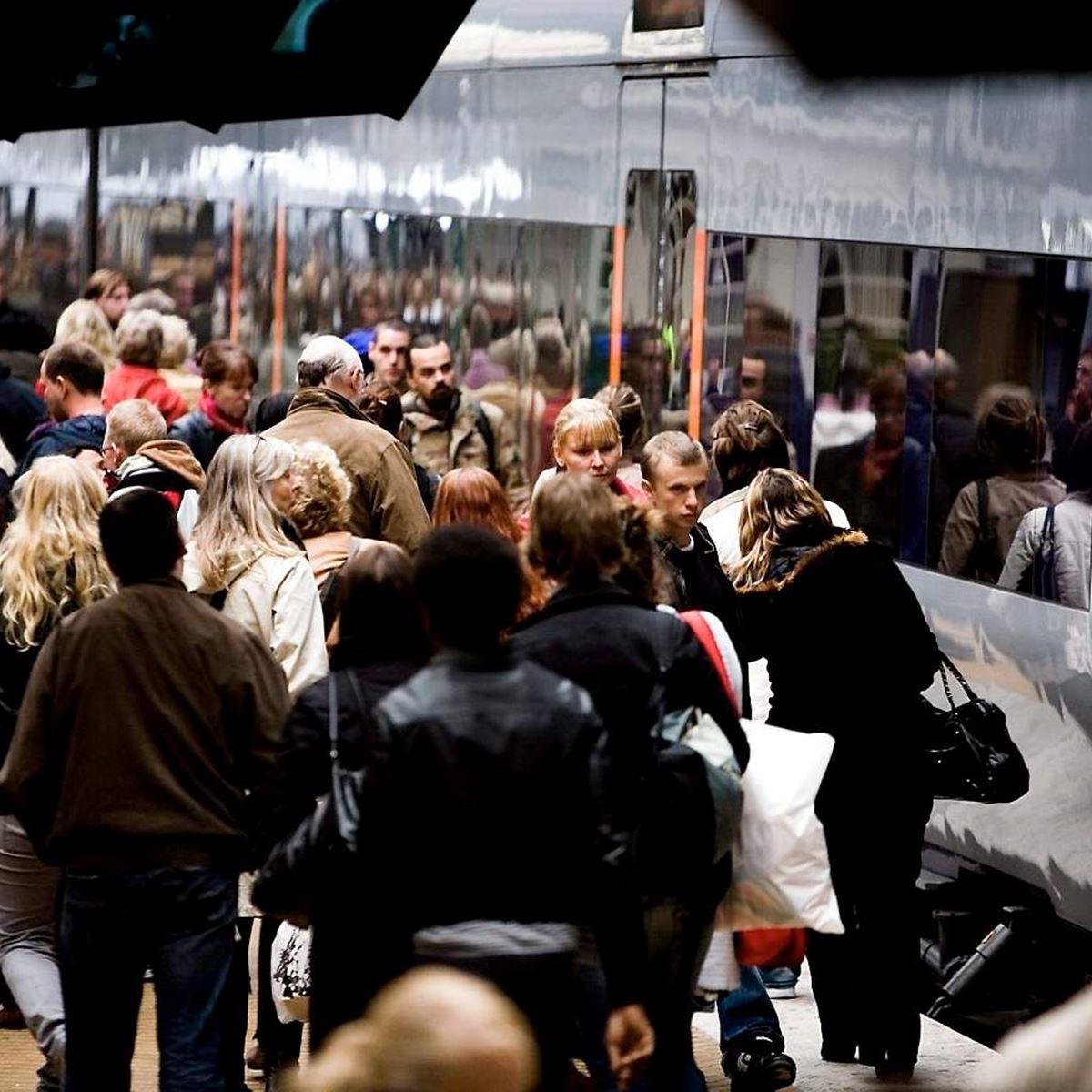 Regeringen vill tvinga Stockholmskommunerna att mångdubbla mottagandet av nyanlända med uppehållstillstånd – M-politiker motsätter sig detta.